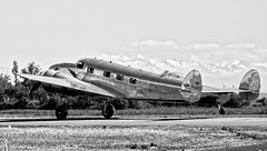 Lockheed L-12 Electra Junior (Nico.H.) Tags: white black nikon aircraft airshow dslr d5100