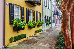 House 93, Rainbow Row (Del.Higgins) Tags: ocean house history yellow town rainbow angle district south wide charles olympus row historic charleston sidewalk rows walkway carolina 93 omd rowhouse em1