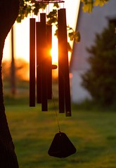 356/365: May 15, 2016 (J. H. Stilson) Tags: sunset sunlight home windchimes 365project