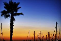 Puerto. Punta del Moral (Huelva) (Angela Garcia C) Tags: vegetacin huelva geografaurbana urbano urbanismo turismo embarcaciones atardecer infraestructura puntadelmoral