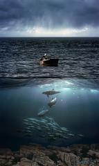 OceanFisherman (clabudak) Tags: ocean sea sky fish seascape nature water boat fisherman waves underwater scene