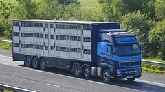 YT62 DTK (panmanstan) Tags: truck wagon volvo motorway yorkshire transport lorry commercial vehicle livestock fh m62 haulage whitley