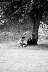 Romance (richardsolway) Tags: lovers park tree landscape couple