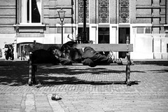 Inge Hoogendoorn (ingehoogendoorn) Tags: sleeping blackandwhite zwartwit sleep pigeon pigeons streetphotography streetscene slaap blacknwhite hobo plein tramp slapen duiven duif hetplein dakloze zwerver straatfotografie