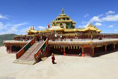 Seda temple (renan4) Tags: sichuan tibet china tibetan seda sertr monastery temple larung buddhistacademy buddhaschool tagong buddha red asia trip travel nikon d800 renan4 renan gicquel