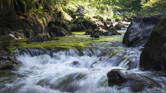 Sometimes the right path is not the easiest one. (haqiqimeraat) Tags: rapids stream waterfall rocks dunkeld scotland hermitage river braan