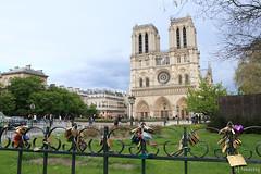 Notre Dame de Paris (tomosang R32m) Tags: paris france church architecture catholic cathedral gothic glise notredamedeparis      cathdralenotredamedeparis