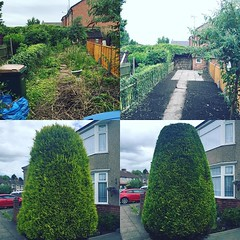 "Nice day of small jobs. Finished the garden clearance from Wednesday, all the borders now rotovated, ready for planting up with something other than brambles 😃 then some small trimming jobs this afternoon 🌞 #wardenstreecare <a style=""margin-left:10px; font-size:0.8em;"" href=""http://www.flickr.com/photos/137723818@N08/27962325701/"" target=""_blank"">@flickr</a>"