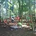 Monkey-Do's tree play area for Greenpeace at Latitude Festival 2011.