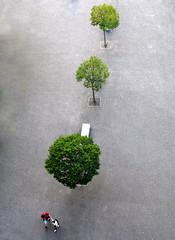 Three plus Two (Batikart) Tags: city travel trees vacation people urban woman holiday man tree green nature canon bench geotagged grey spring spain holidays europa europe pov pavement urlaub natur grau aerialview bank fromabove menschen bilbao sidewalk stadt april mann grn frau footpath bume twopeople vasco baum euskalherria birdseyeview euskadi vizcaya basquecountry spanien vacanze 2012 threetrees 2010 frhling baskenland me