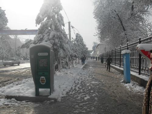 Последствия снегопада в Курган-тюбе (22)