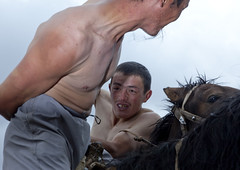 Men Doing Horse Wrestling In Saralasaz Jailoo, Kyrgyzstan (Eric Lafforgue) Tags: two horses people horse playing male men animal sport horizontal closeup fun mammal person togetherness amusement asia exterior wrestling contest culture competition entertainment riding together pasture tradition centralasia kyrgyzstan twopeople humanbeing nomads barechest horseriding colorphoto contesting bridle horseman 2015 kyrgyzrepublic kirghizistan kirgistan twopersons kirghizstan equestriangames kirgisistan horsegames  horsewrestling nomadiclifestyle  oodarysh  saralasazjailoo quirguizisto