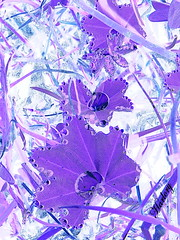 violet (Harlory) Tags: abstract nature grass leaves nikon purple violet drop romania coolpix mauve p100