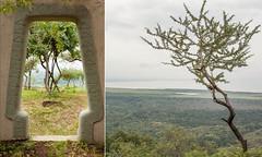 Lake Manyara Tanzania (flamed) Tags: travel tree diptych adventure safari gateway lush africalandscape africacountryeastafricalakemanyaratanzania