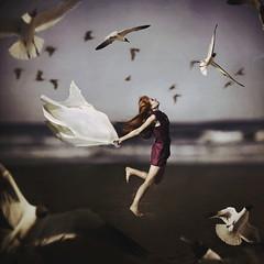 Mocking Birds (Shelby Robinson) Tags: ocean light red portrait seagulls beach water girl birds self canon rebel 50mm sand waves dress purple bright f18 har teenage t1i