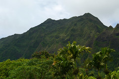 oahu mountains