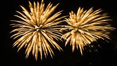 Fourth of July Fireworks at Big Cedar Lodge, Missouri (39 of 45) (Diacritical) Tags: night fireworks f14 tripod 4th missouri fourthofjuly 24mm july4th 4thofjuly independenceday iso1600 2012 d4 2470mmf28 20sec bigcedarlodge nikond4