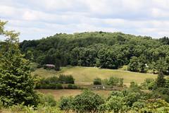West Virginia 6-12-542 (Cwrazydog) Tags: thomas stewart westvirginia davis parsons blackwaterfalls elkins grafton philippi belington morantown