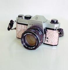 Stay classy, spotmatic, stay classy. (Daire Quinlan) Tags: pink colour 120 film kodak fake gear s gas bronica 400 porn spotmatic portra sqa snakeskin 80mm c41 s18 sqai