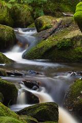 Lets twist again ... (aberconwyphotography) Tags: summer tree green water landscape waterfall moss rocks branch sheffield southyorkshire wildlifetrust wymingbrook sssi siteofspecialscientificinterest