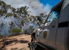 Mount Hay Hazard Reduction (Quarrie Photography) Tags: new blue wales rural fire photography wildlife south sydney parks australia mount national nsw service hay hr fires hazard bushfires reduction rfs maintains npws quarrie diimex