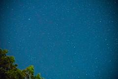Starry Night at the Lake - 3 (taylorsloan) Tags: sky lake green night stars galaxy lakeoftheozarks starrynight noob clearnight starsinthesky takingnightshots