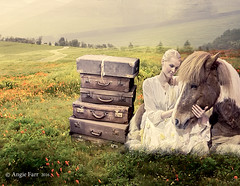 The Last Farewell... (rubyblossom.) Tags: horse woman field lady sad meadow mmm poppies goodbye challenge 81 2016 rubyblossom rubystreasures