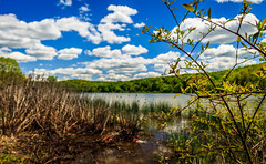 Foreground in Focus (david_sharo) Tags: lake water landscape scenic moraine davidsharo