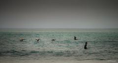 Back of your neck (.KiLTRo.) Tags: ocean california sea beach water coast surf unitedstates surfer wave surfing sanclemente rider sanonofre kiltro