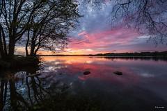 couchant au lac du drennec (berjanic) Tags: pink sunset lake france tree water clouds reflections landscape evening eau lac bretagne nuages paysage soir arbre reflets coucherdesoleil finistre montsdarre commana lacdudrennec
