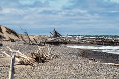 Michigan_North-0746.jpg (CitizenOfSeoul) Tags: usa beach sand michigan may greatlakes shore northamerica upperpeninsula lakesuperior whitefishpoint 2016