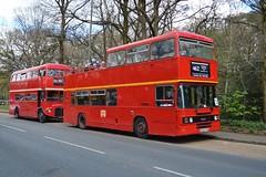 L245 D245FYM (PD3.) Tags: bus london buses museum vintage spring coach open top transport surrey topless gathering trust cobham l annual preserved topper fym preservation leyland psv pcv brooklands olympian 245 2016 d245 lbpt redroutemaster l245 d245fym