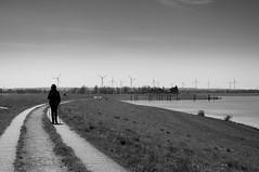 a walk (Jos Mecklenfeld) Tags: bw lake germany landscape deutschland see meer hiking wandelen windmills landschaft wandern duitsland artland landschap niedersachsen windmolens windmhlen osnabrckerland alfsee rieste sonynex3n ankumerhhe