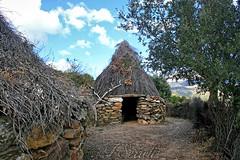 Pinnetas a Orune (Franco Serreli) Tags: sardegna sardinia campagna barbagia capanna capanne nuorese orune pinneta campagnasarda pinnetas