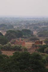 2016myanmar_0363 (ppana) Tags: bagan alodawpyay pagoda ananda temple bupaya dhammayangyi dhammayazika gawdawpalin gubyaukgyi myinkaba wetkyiin htilominlo lawkananda lokatheikpan lemyethna mahabodhi manuha mingalazedi minochantha stupas myodaung monastery nagayon payathonzu pitakataik seinnyet nyima pagaoda ama shwegugyi shwesandaw shwezigon sulamani thatbyinnyu thandawgya buddha image tuywindaung upali ordination hall