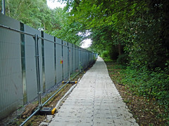 Temporary walkway along Duke's Drive, 2016 Jun 24 (Dunnock_D) Tags: uk unitedkingdom britain chester trees tree dukesdrive temporary walkway construction woods woodland wood forest gb england