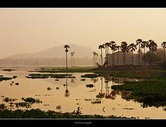 Dawn at Lake Powai ( WimKok) Tags: india canon bombay nik mumbai lightroom powai lakepowai eos7d