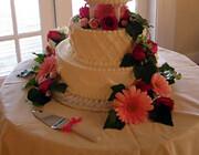 "slide_cake_wedding • <a style=""font-size:0.8em;"" href=""https://www.flickr.com/photos/77192005@N08/6923304574/"" target=""_blank"">View on Flickr</a>"