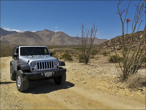 Jeep in Collins Valley
