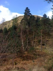 Signal Rock, Glencoe