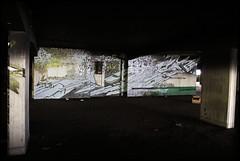 Lek/Sowat (SÖKE) Tags: street urban terrain streetart paris art colors wall fleurs painting lost graffiti paint artist couleurs tag letters style spot spray peinture painter graff mur bombing abandonned lettres graffeur banlieue photographe abandonné graphotism vierge soke lieu friche batîment