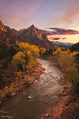 Icon ([Chris Tennant]) Tags: sunset mountain southwest canon utah nationalpark glow dusk cottonwood sw zion iconic virginriver watchman desertscape christennantphotography