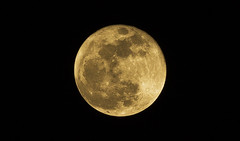 [Supermoon] (d & ) Tags: moon night astro bangladesh solarsystem purnima warewolf supermoon