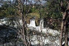 Victoria Falls_2012 05 24_1707 (HBarrison) Tags: hbarrison harveybarrison tauck victoriafalls zimbabwe zambeziriver mosioatunya