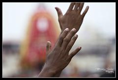 Raise your hands to the Lord (frozenmoments.in) Tags: canon temple photography hand god faith prayer religion crowd devotee hindu hinduism yatra chariot rath puri raise jagannath sarkar 550d carfestival odisha birashis birashissarkar