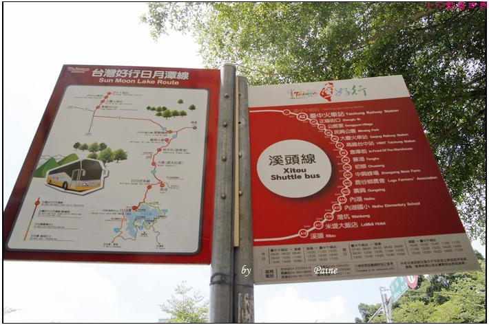 南投溪頭妖怪村 (1).JPG