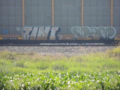 Tint Space (GraffStoleMyLife) Tags: train circle t graffiti wolf space tag tint 63 yme owl piece mes ich ichabod jec frieght spek moune epik journe