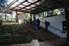 Tenedor del Cerro