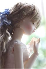 summer_2 (waa__coo) Tags: blue fairy tiny bjd sarang tf bluefairy
