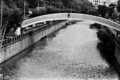 (Misha Lu) Tags: bridge blackandwhite bw film river landscape russia moscow mishalu
